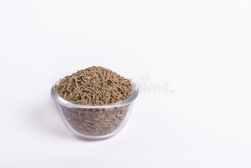 Graines de cumin photo stock