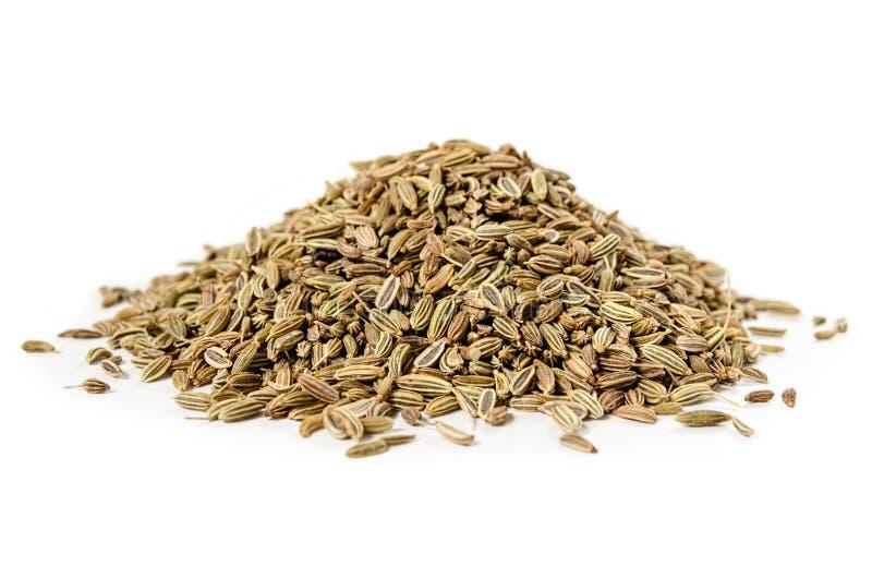Graines de fenouil sèches d'isolement image stock
