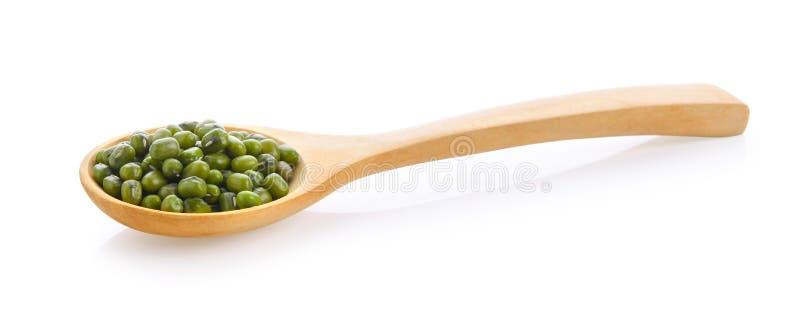 Graines de haricots verts dans la cuillère en bois sur le fond blanc photo stock