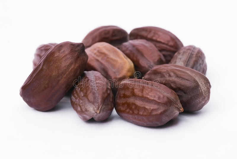 Graines de jojoba (Simmondsia chinensis) photos libres de droits