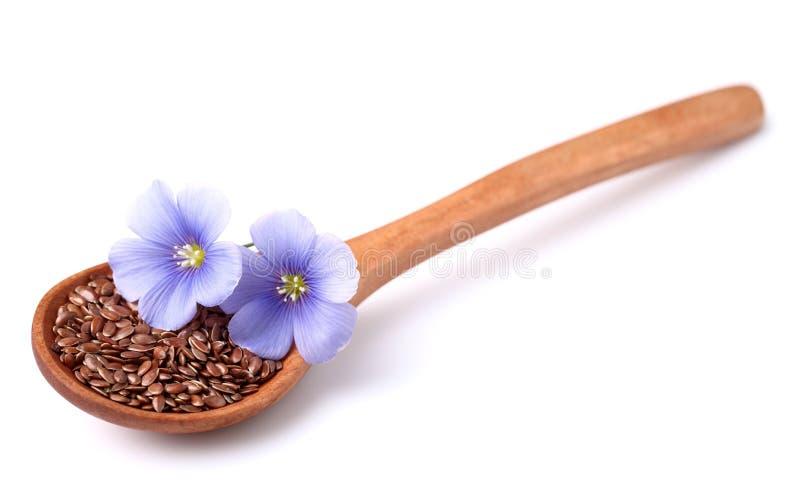 Graines de lin avec des fleurs image stock