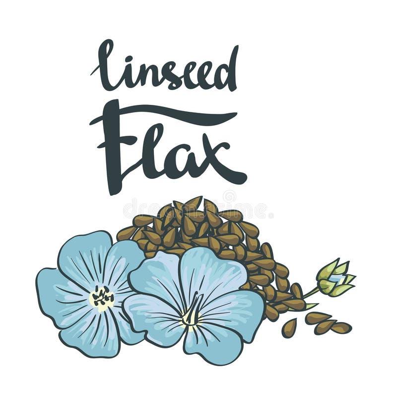 Graines de lin avec des fleurs illustration de vecteur