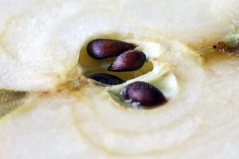 graines de pomme photo stock