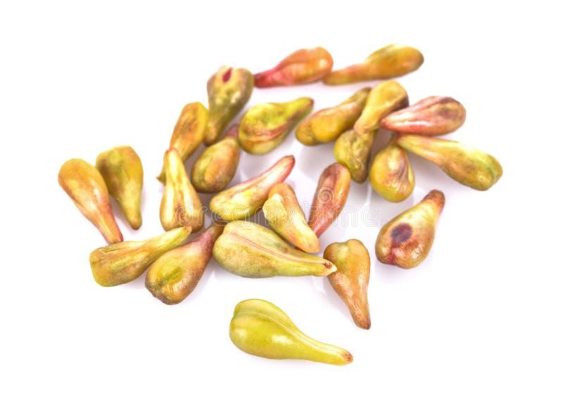 Graines de raisin sur le plan rapproché blanc de macro de fond photo stock