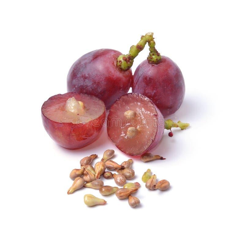 Graines de raisin sur le plan rapproché blanc de macro de fond photographie stock libre de droits