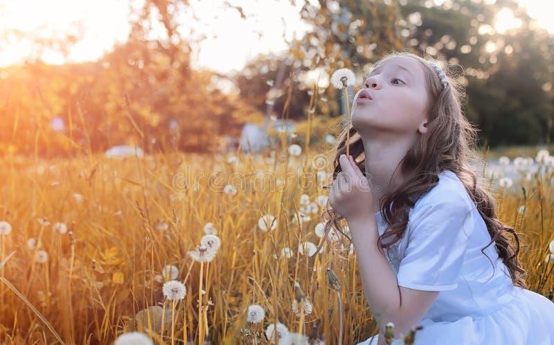 Graines de soufflement d'ado d'une fleur de pissenlit en parc photographie stock