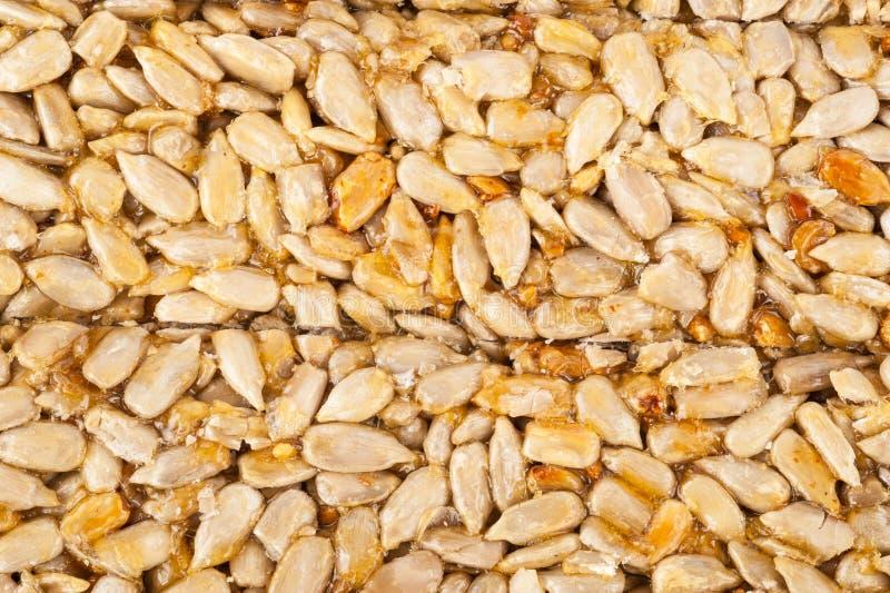 Graines de tournesol pressées glacées en sirop doux, kozinaki images stock