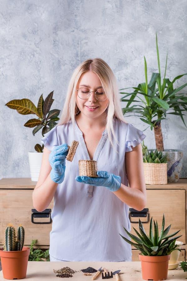 Graines en caoutchouc de plantation à la maison de gants de femme de passe-temps photo libre de droits