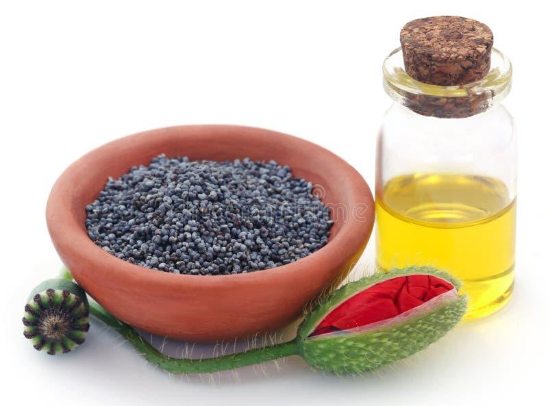 Graines et cosses de fleur de pavot avec l'extrait image stock