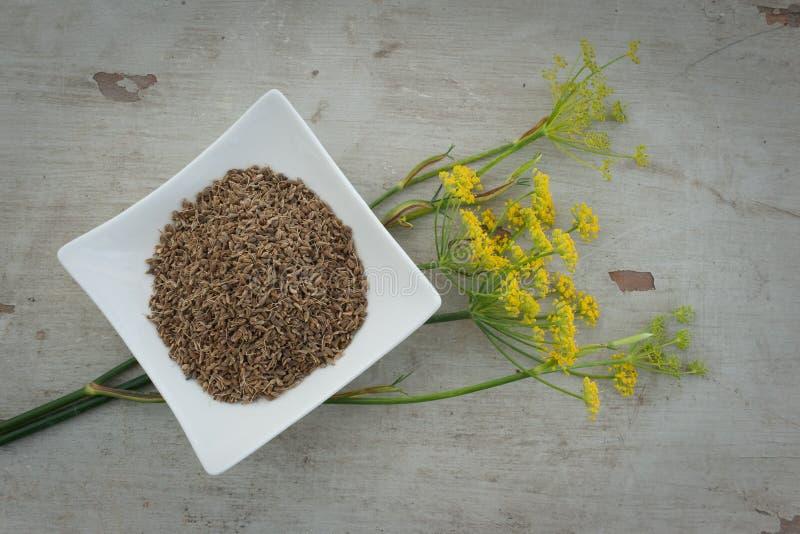Graines et fleur d'anis de plaque photographie stock libre de droits