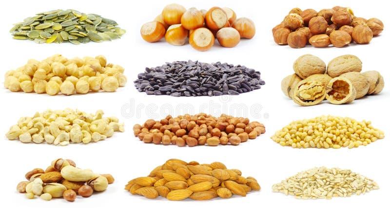 Graines et noix photos stock