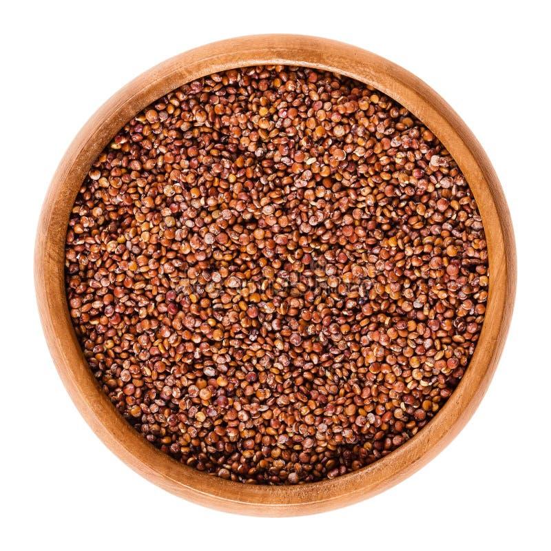 Graines rouges de quinoa dans la cuvette en bois au-dessus du blanc photos stock