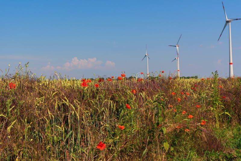 Grainfield con la turbina imágenes de archivo libres de regalías