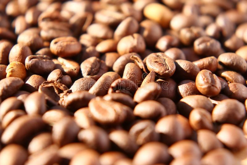 Grains of aromatic roasted coffee scattered on a cardboard surface in the rays of the rising sun. Spilled coffee. Grains of aromatic roasted coffee scattered on royalty free stock image