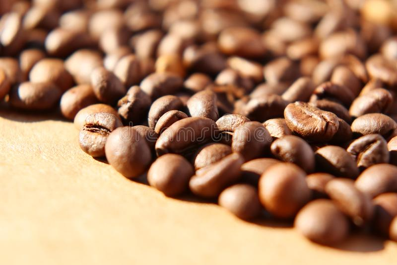 Grains of aromatic roasted coffee scattered on a cardboard surface in the rays of the rising sun. Spilled coffee. Grains of aromatic roasted coffee scattered on royalty free stock photos