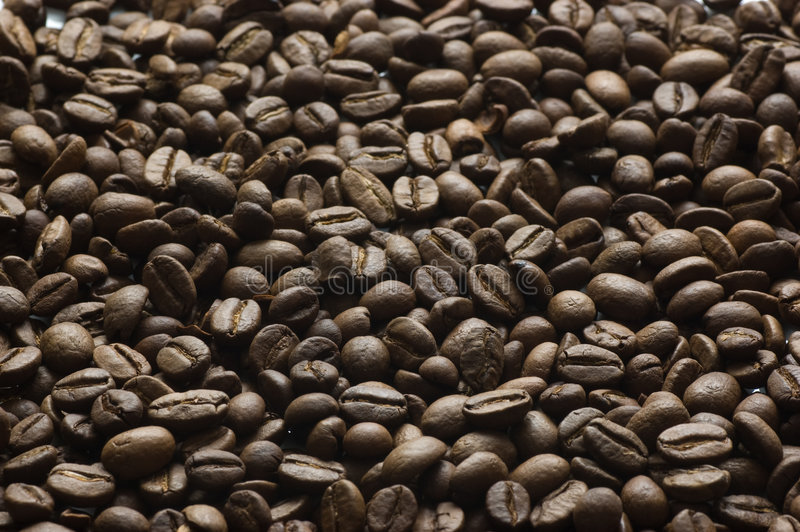 Grains of coffee. Close up stock photo