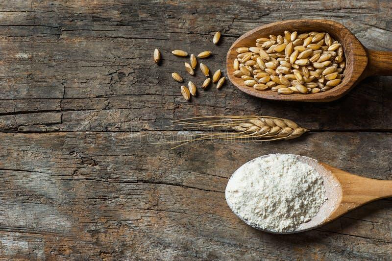 Grains de blé et farine de blé dans le scoop ou la pelle en bois avec des transitoires ou oreilles sur le fond en bois rustique image libre de droits