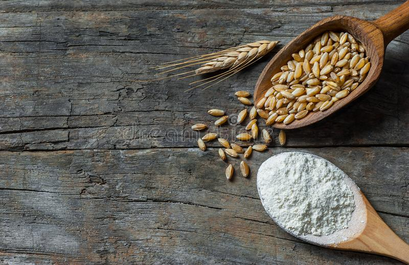 Grains de blé et farine de blé dans le scoop ou la pelle en bois avec des transitoires ou oreilles sur le fond en bois rustique photos libres de droits