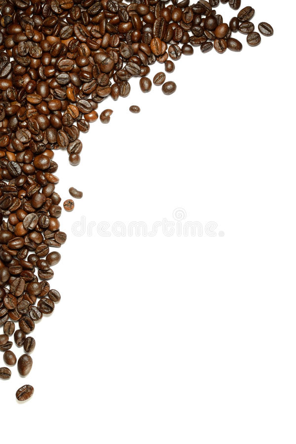 Grains de café photo libre de droits