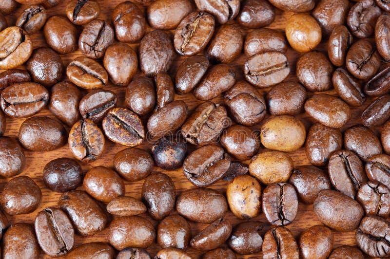 Grains de café images stock
