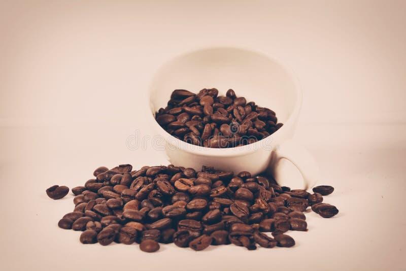 Grains de café photographie stock libre de droits