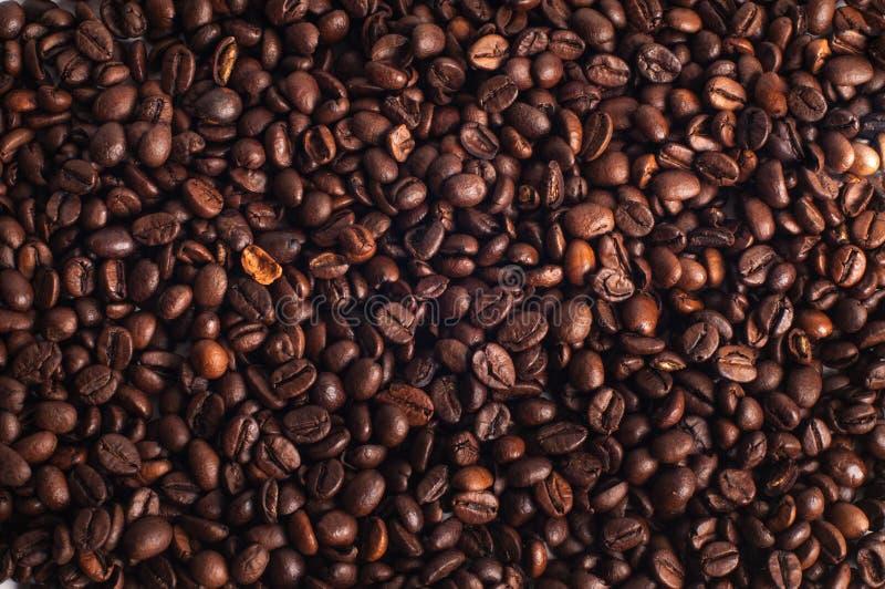 Grains de café côte à côte images stock