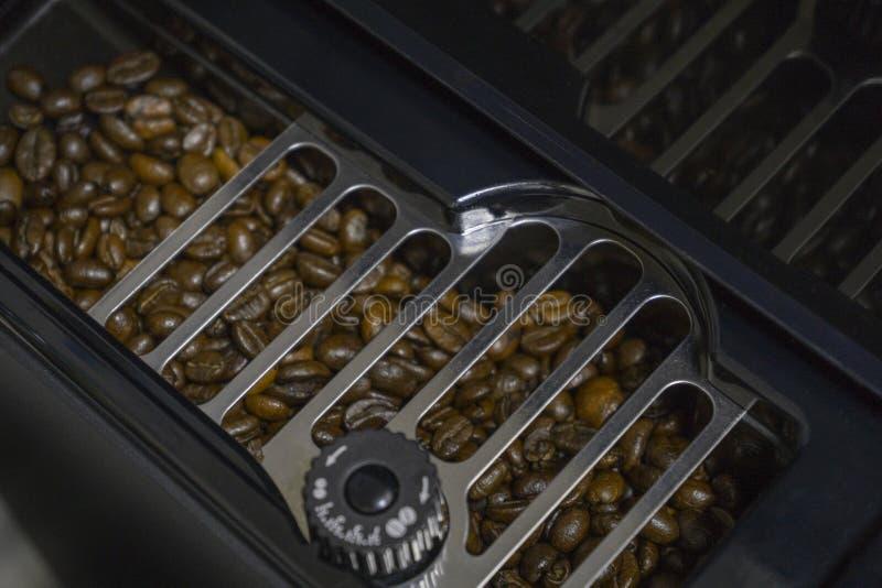 Grains de café dans la machine de café de prise images libres de droits