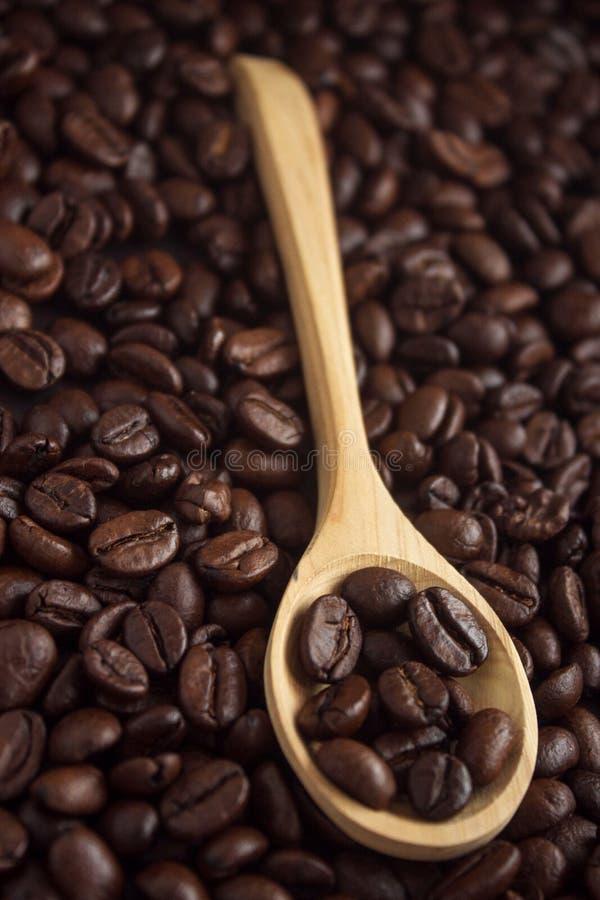 Grains de café dans une cuillère photos libres de droits