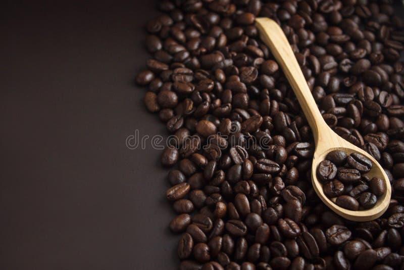 Grains de café dans une cuillère photo stock