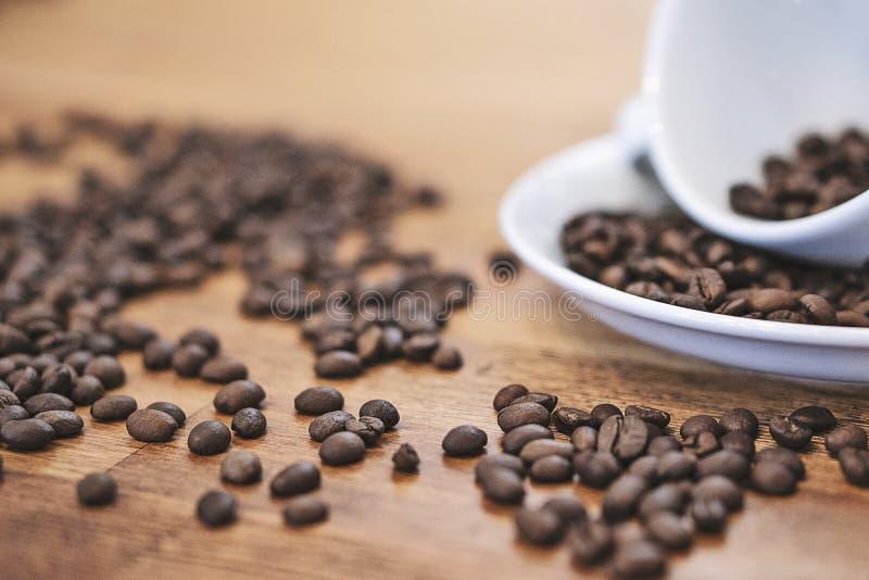 Grains de café dans une tasse blanche sur une table en bois avec un coff moderne photos libres de droits