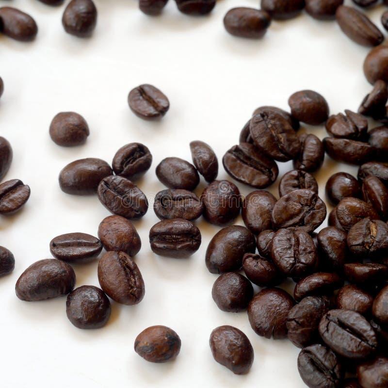 Grains de café de Brown d'isolement sur le blanc images stock