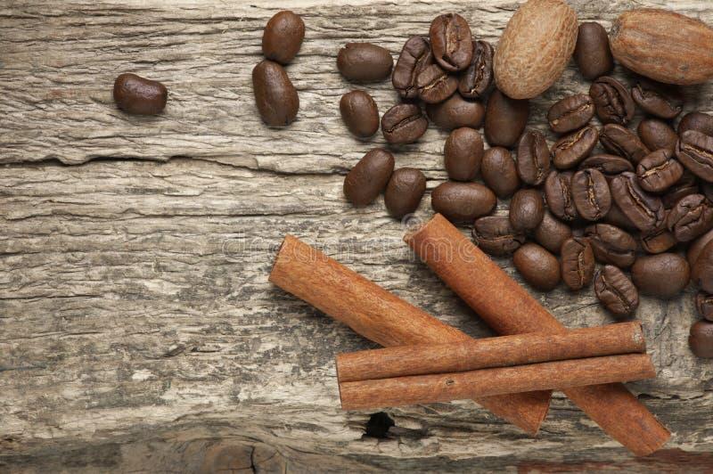 Grains de café et épices images stock