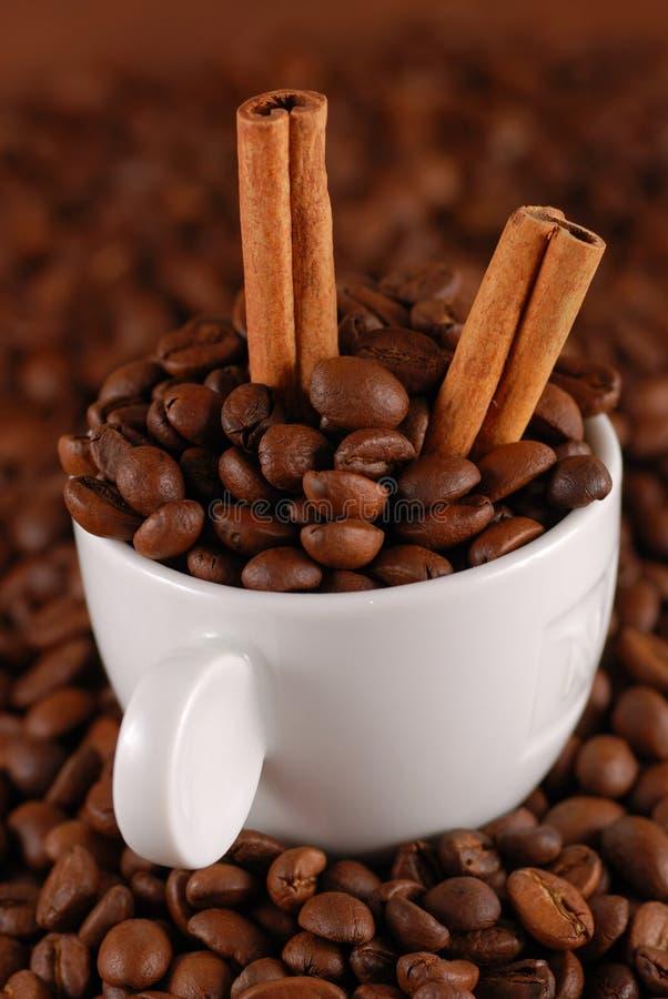 Grains de café et cannelle image libre de droits