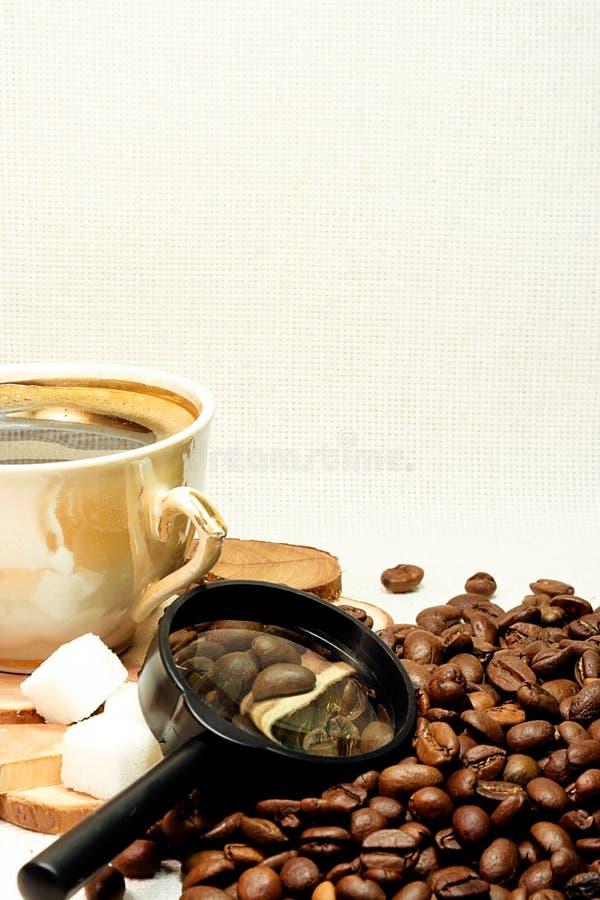 Grains de café et glace photos stock
