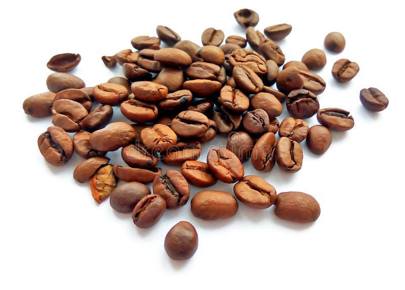 Grains de café et graines bruns rôtis d'isolement image libre de droits