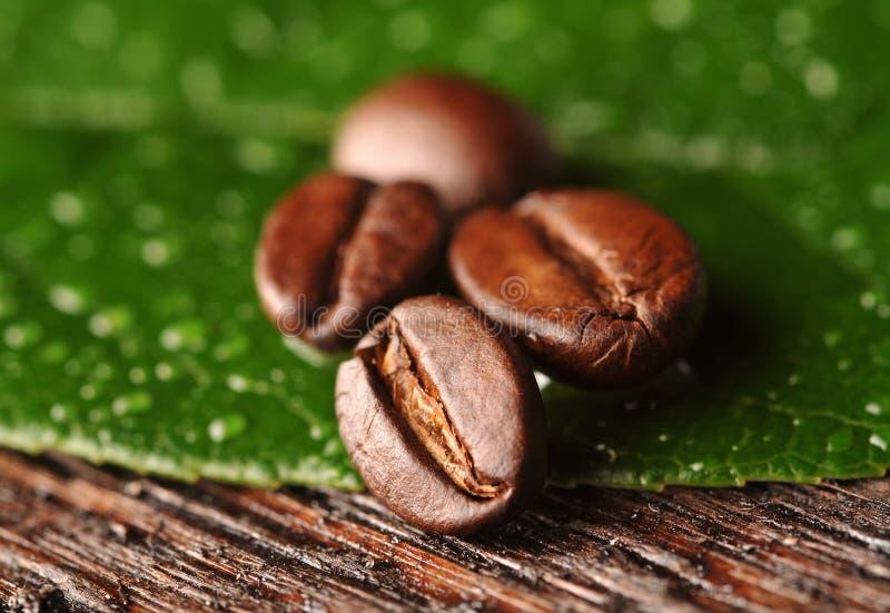 Grains de café et lame photographie stock libre de droits