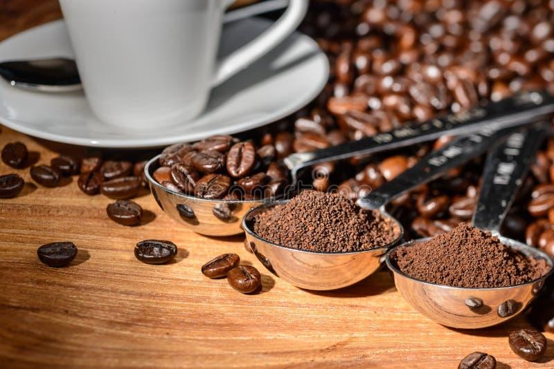Grains de café et poudre photo stock