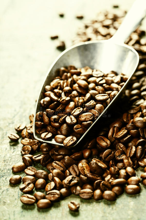 Grains de café et scoop en métal photographie stock