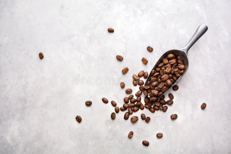 Grains de café frais images libres de droits