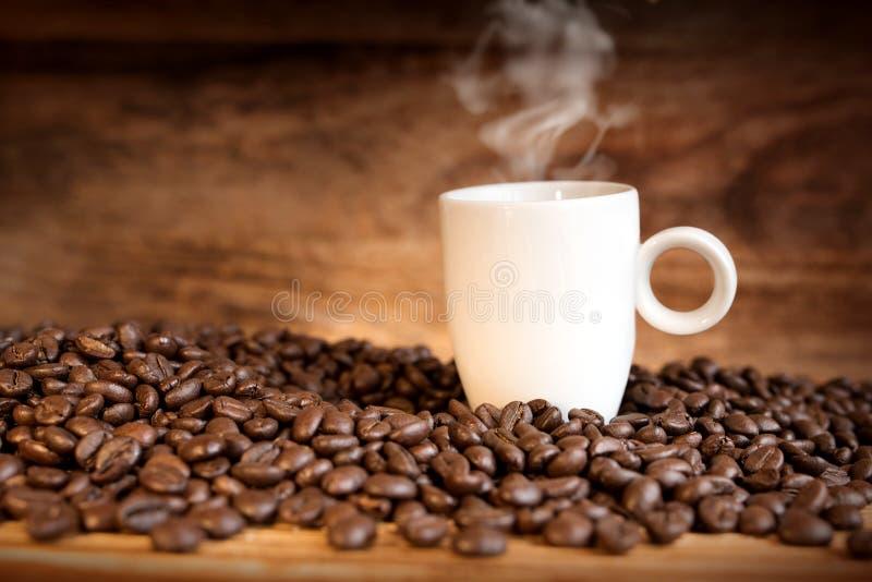 Grains de café frais avec une tasse photo libre de droits