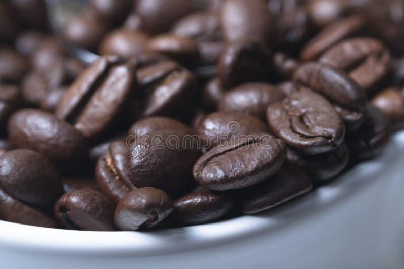 Grains de café macro dans la cuvette photos libres de droits