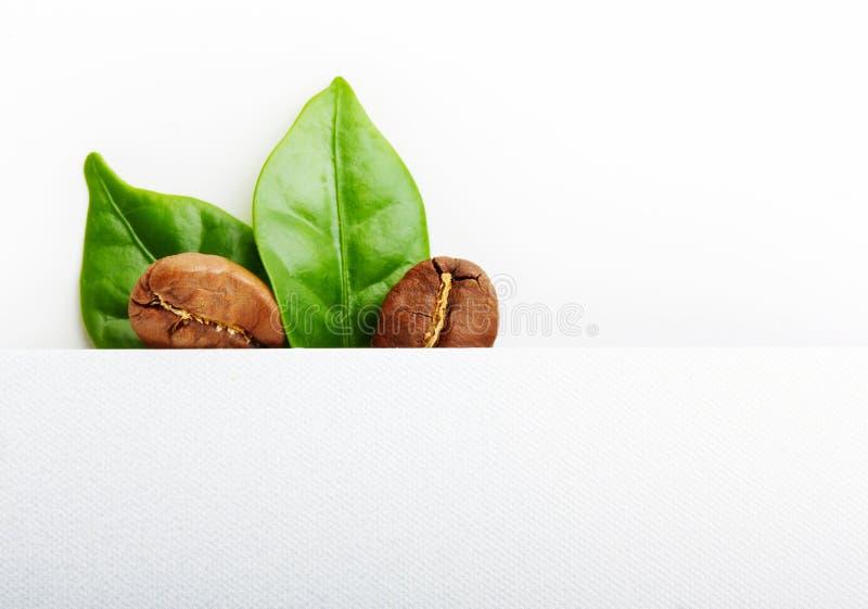 Grains de café noirs, grain avec la feuille photographie stock libre de droits