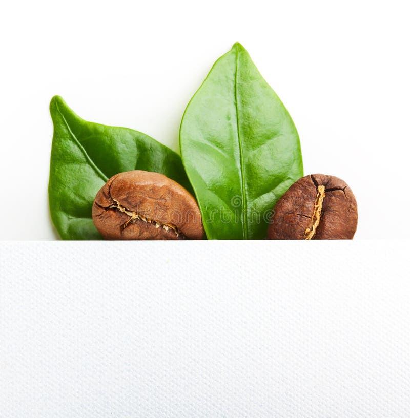 Grains de café noirs, grain avec la feuille image stock
