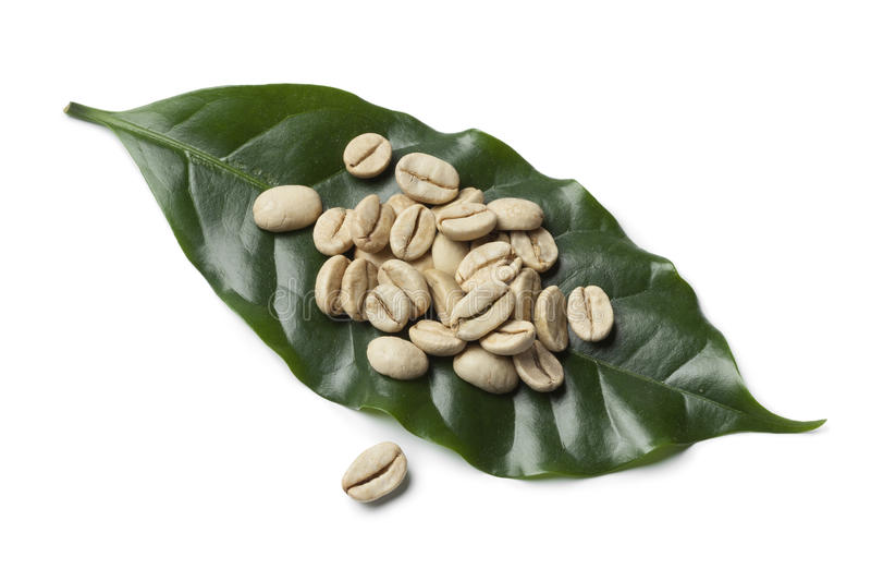 Grains de café non rôtis verts de Malabar d'Indien image libre de droits