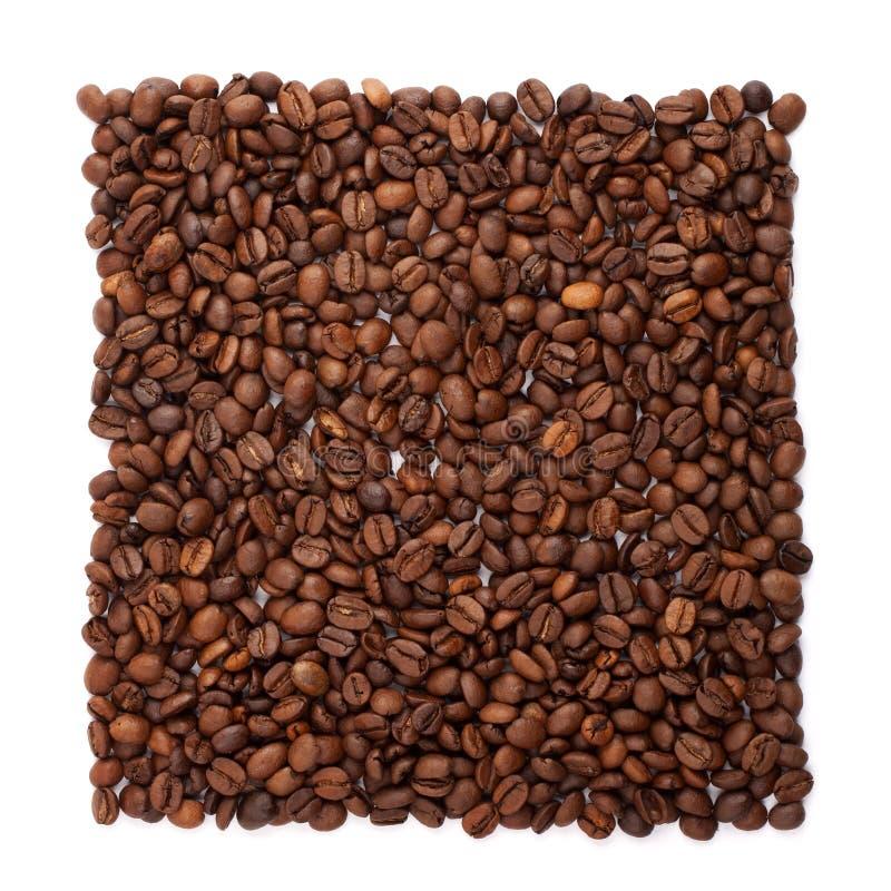 Grains de café organisés en solidement photo stock
