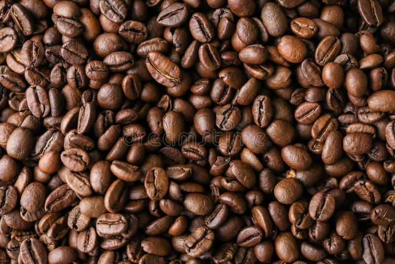 Grains de café pour le café délicieux que vous faites photo libre de droits