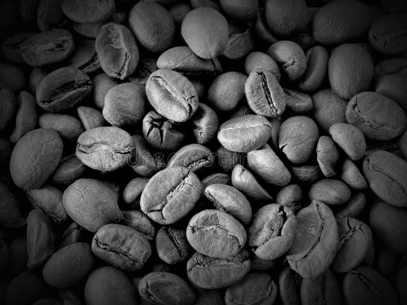Grains de café de récolte photos stock