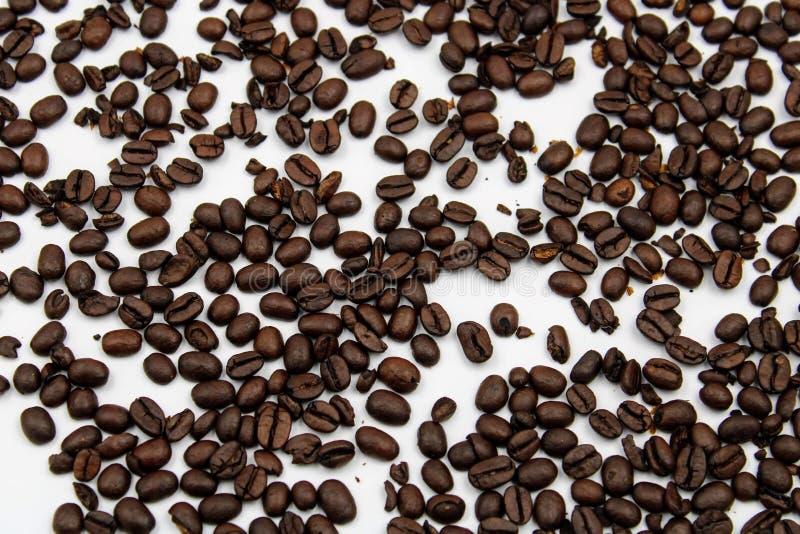 Grains de café de rôti image stock