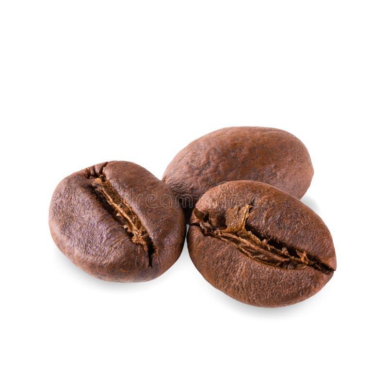 Grains de café rôtis frais d'isolement sur le fond blanc image libre de droits