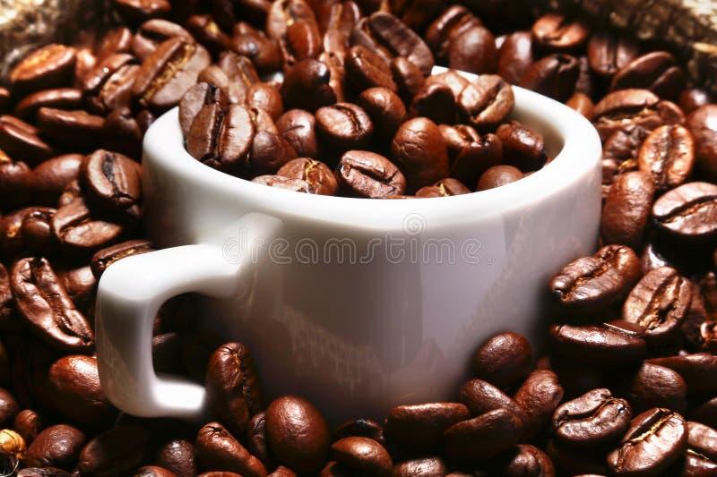 Grains de café rôtis frais dans le sac à toile de jute, la tasse de café et la broyeur sur le fond foncé photo libre de droits
